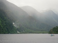 Doubtful Sound – The Wettest Place on Earth