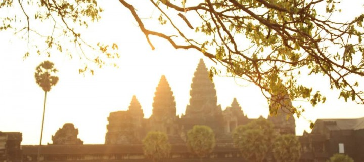 Angkor Wat – Fighting to Survive