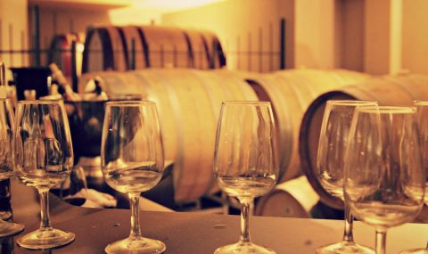6 Steps to Taste Wine Like a Pro & Develop Your Palate