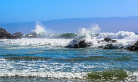 How the Ocean Stole My Camera in Carmel-by-the-Sea